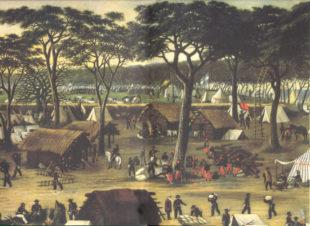 curuzu-1866